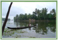 Alleppey Backwaters, Kerala